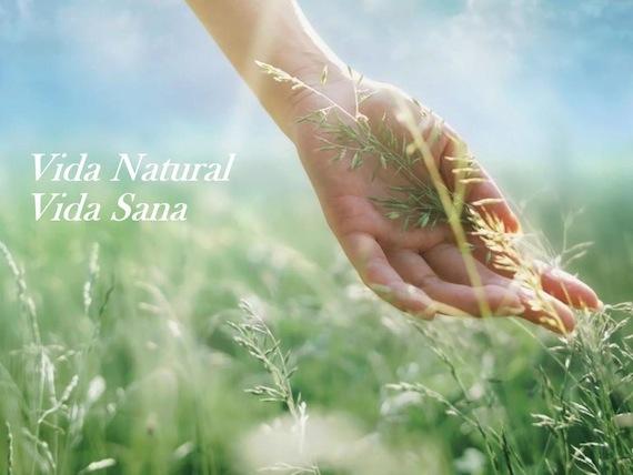 Hierbas y plantas medicinales. Herbolario